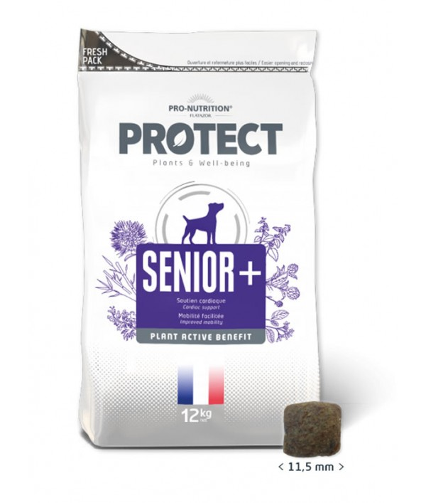 Protect Senior+ Canino
