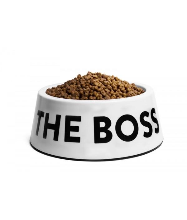 Zee Dog I'm The Boss Bowl White