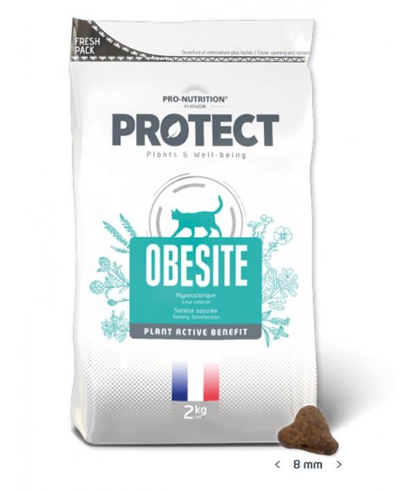 Protect Obesite Felino