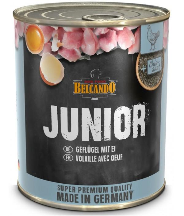 Belcando Junior Ave y Huevo