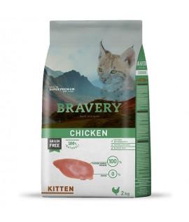 Bravery Chicken Kitten