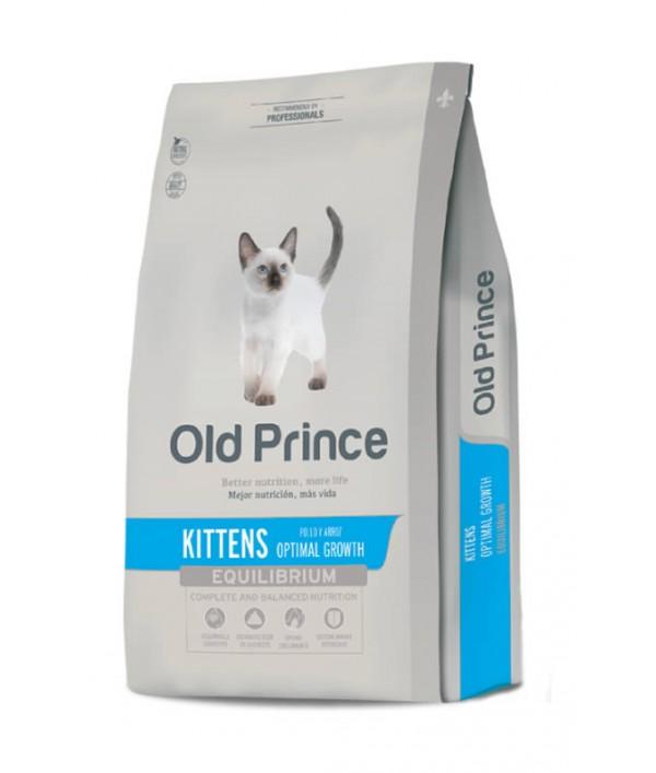 Old Prince Kitten